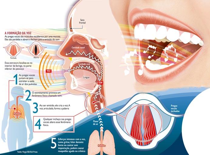 Como são as cordas vocais